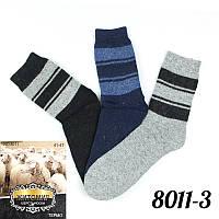 Очень теплые носки мужские ангоровые, шерстяные, махровые Житомир 8011-3   12 шт.
