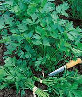 Семена листовой петрушки Гиганте де Италия 0,5 кг. Semo