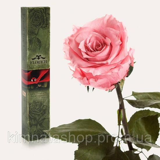 Долгосвежая троянда Рожевий Кварц 7 карат (коротке стебло)