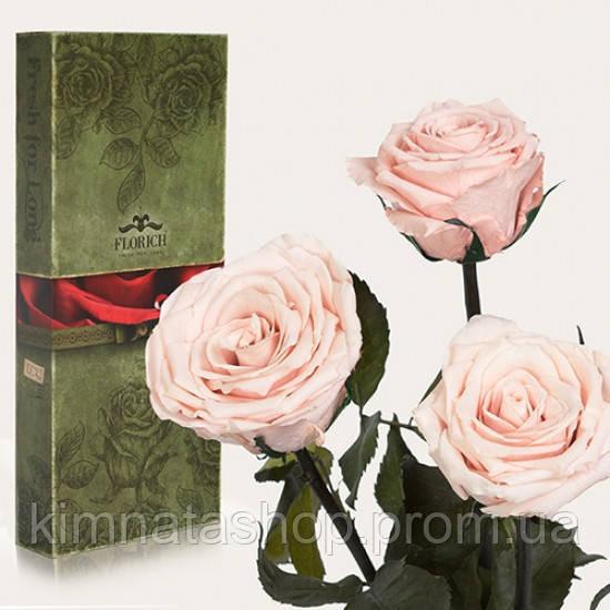 Три долгосвежих троянди Рожевий Перли 5 карат (коротке стебло)