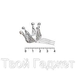 Гребешок 1268601