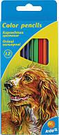 Карандаши цветные KITE K15-051K (12 цветов)