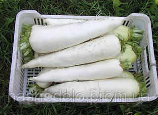 Семена редиса дайкон Ярола F1 5000 семян Semo