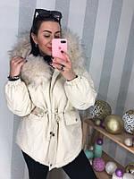 Жіноча зимове коттоновая куртка, різні кольори, фото 1