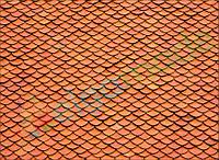 Фетр с принтом ЧЕРЕПИЦА, 22x30 см, корейский жесткий 1.2 мм