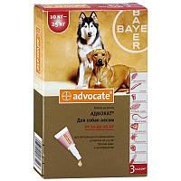ADVOCATE (АДВОКАТ) краплі від бліх для собак вагою від 10 до 25 кг, 1 піпетка