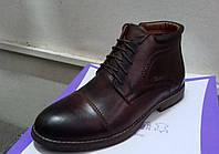 Ботинки мужские Vivaro натуральная кожа качественные коричневые, фото 1