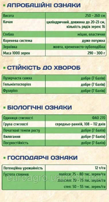 Отечественная селекция - Любава  279 МВ - ФАО 270