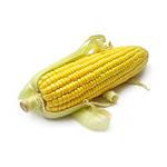 Семена кукурузы Отечественная селекция (ВІТЧИЗНЯНА СЕЛЕКЦІЯ)