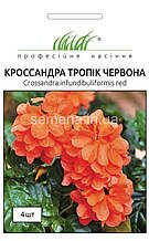 Кроссандра Тропік червона 4 шт