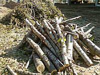 Порезка дров Киев и область
