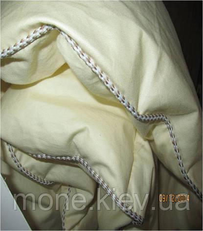 Одеяло бамбуковое Тропик полуторное, фото 2