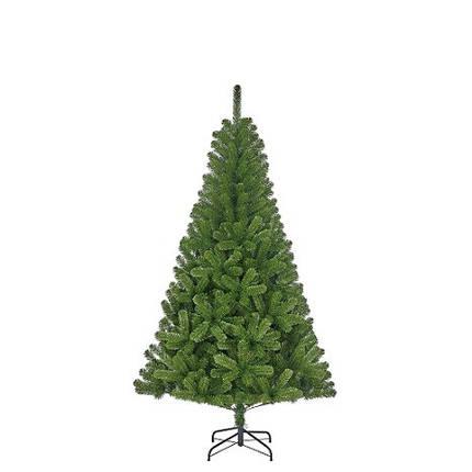 Сосна 1,85 м. Charlton зеленая, фото 2