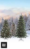 Сосна 1,85 м. Millington зеленая со снегом, фото 2