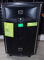 Аккумуляторная колонка с усилителем Temeisheng QX -1021 Комбик
