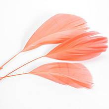 Перо гусиное, Цвет: Светло-лососевый, Размер: 130~190x12~38мм, (УТ100006035)