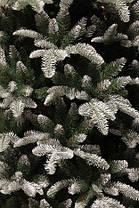 Ель 2,15 м. Hallarin зеленая с инеем, фото 2