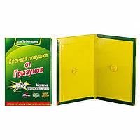 Пастка для мишей, Catch Expert, клейова пастка для мишей, пастки для мишей, товкач репелл 6000213, фото 1