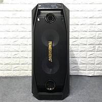 Аккумуляторная колонка с усилителем Temeisheng TMS-802 реплика с двумя микрофонами