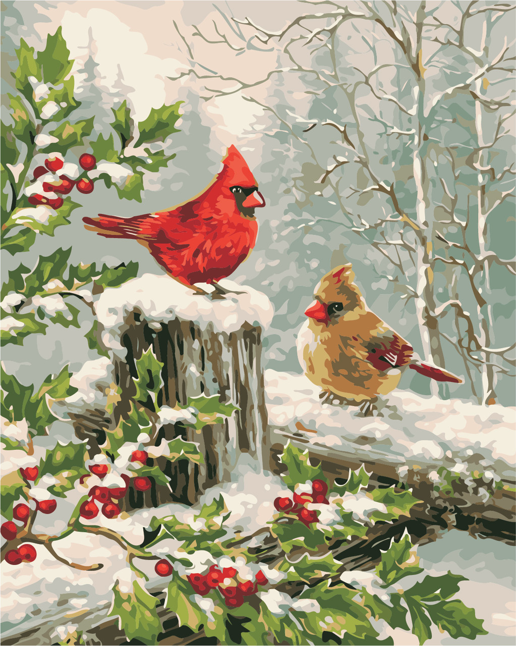 "Картина по номерам ""Зимние птички"" 40*50см"