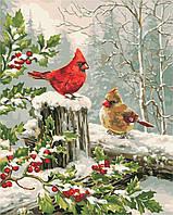 """Картина по номерам """"Зимние птички"""" 40*50см, фото 1"""