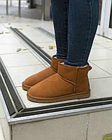 Ботинки женские UGG Mini Bailey Bow   натуральная овчина replica AAA