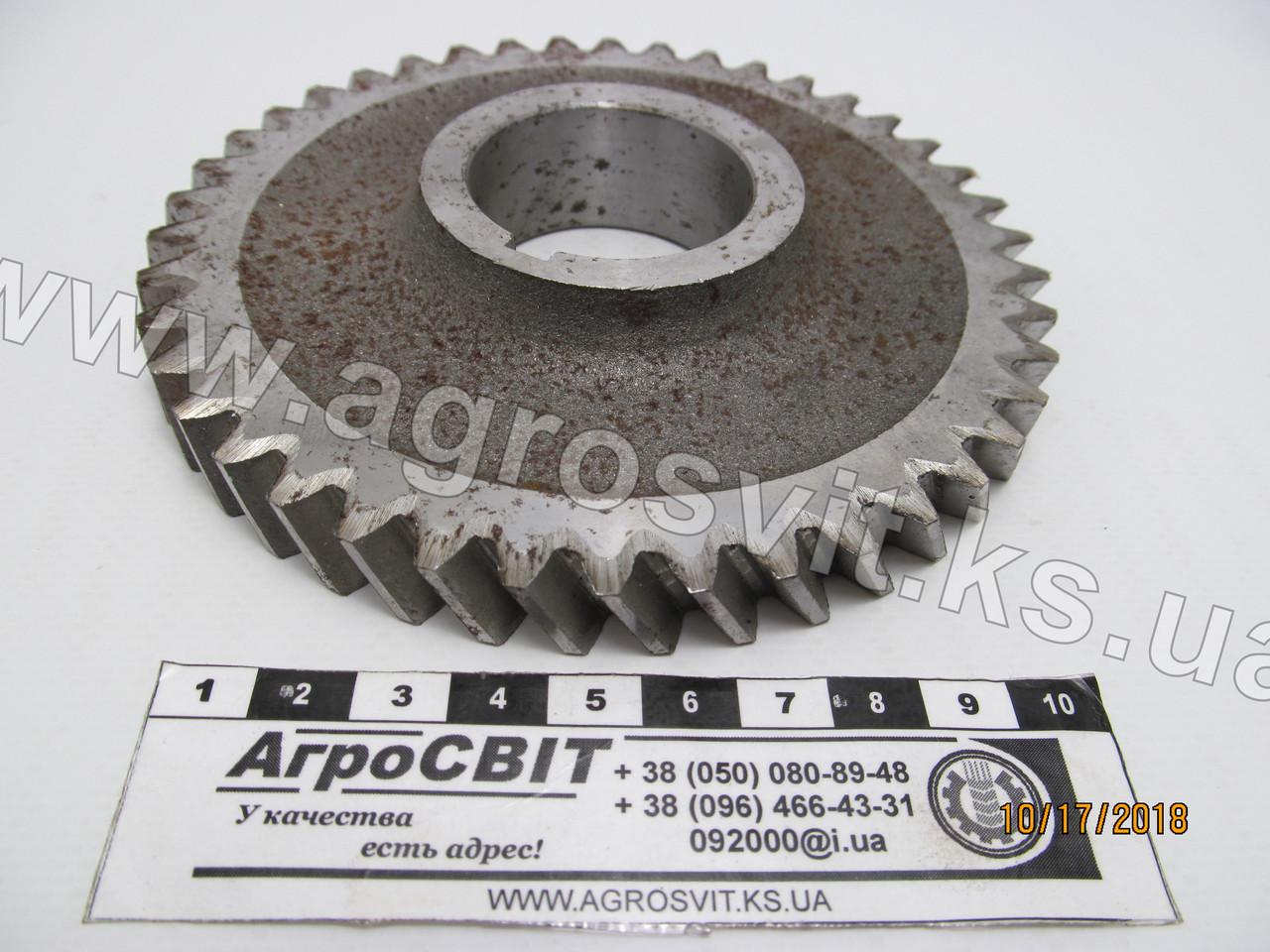 Шестерня привода масляного насоса Д-240-245, 240-1005033-01