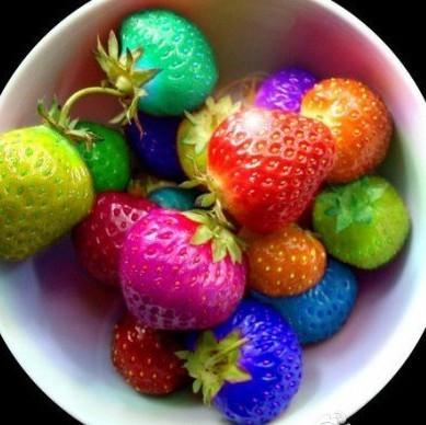 Семена разноцветной клубники! 200 шт. упаковка!