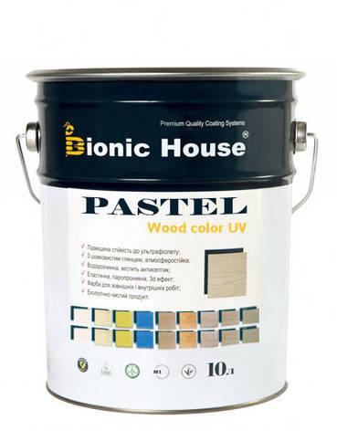 Акриловая лессирующая лазурь на водной основе PASTEL Wood color / Пастел Вуд колор (уп.10л), фото 2