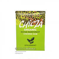 Жевательная резинка со вкусом мягкой мяты органическая Chicza 30г