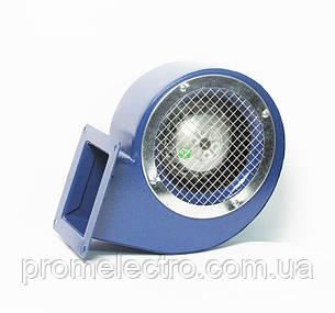Радиальный вентилятор Bahcivan BDRS 140-60, фото 2