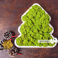 """Новогодние сувениры """"Ёлочки"""" со мхом от Artis Green, wasabi"""
