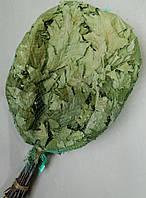 Віник банний дубовий 50 см (+-) Веник банный дубовый