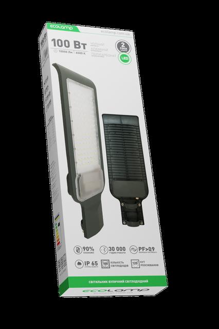 Світильник вуличний 100W 85-265V 6500K ECOLAMP