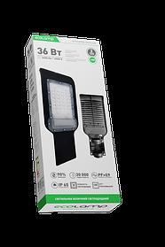 Світильник вуличний 36W 85-265V 6500K ECOLAMP
