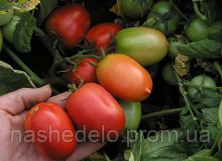 Семена томата Денар 10 000 семян Semo