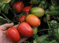 Семена томата Денар 300 гр. Semo