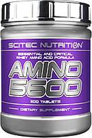 Scitec Nutrition Amino 5600, 200 tableland sangre grande