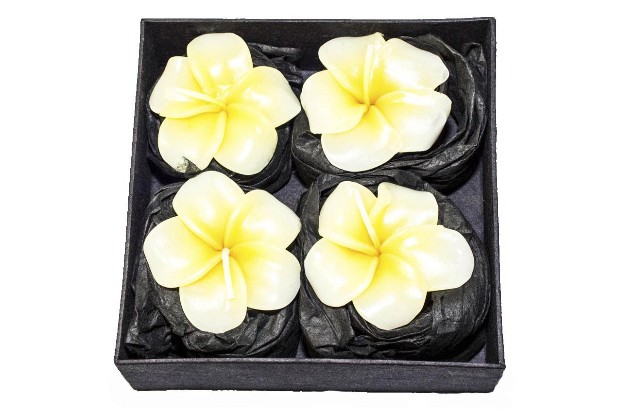 Набор из 4 свечей «Плюмерия» в подарочной коробке