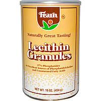 Fearn Natural Food, Гранулы лецитина, 16 унций (454 г)