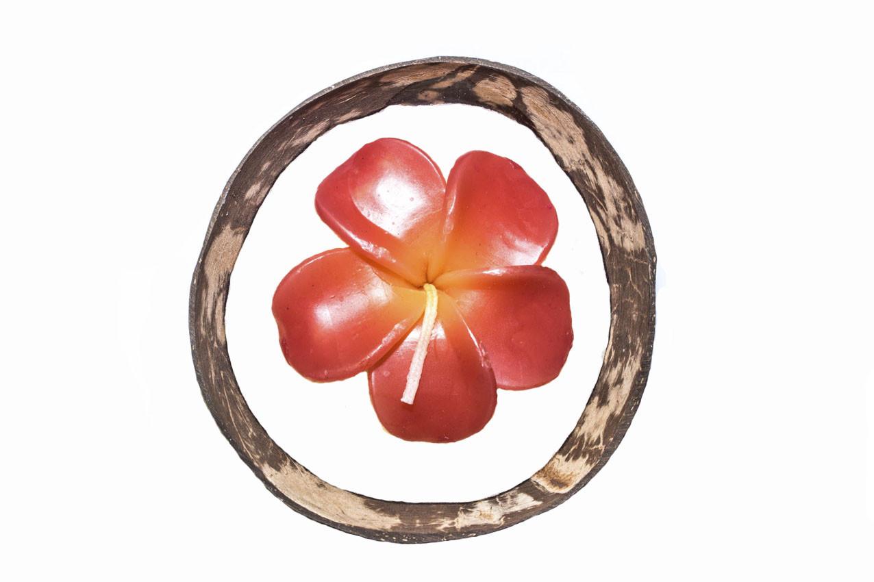 Свеча «Плюмерия» в кокосовой оболочке