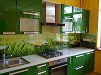 Скинали - Рабочая стенка кухни из стекла