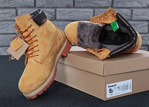 Женские (мужские) зимние ботинки Timberland 6 inch Yellow с натуральным мехом, фото 2
