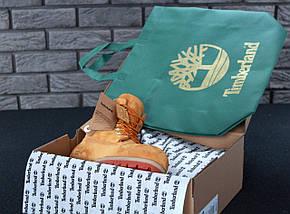 Женские (мужские) зимние ботинки Timberland 6 inch Yellow с натуральным мехом, фото 3