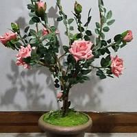 Розовое деревце, фото 1