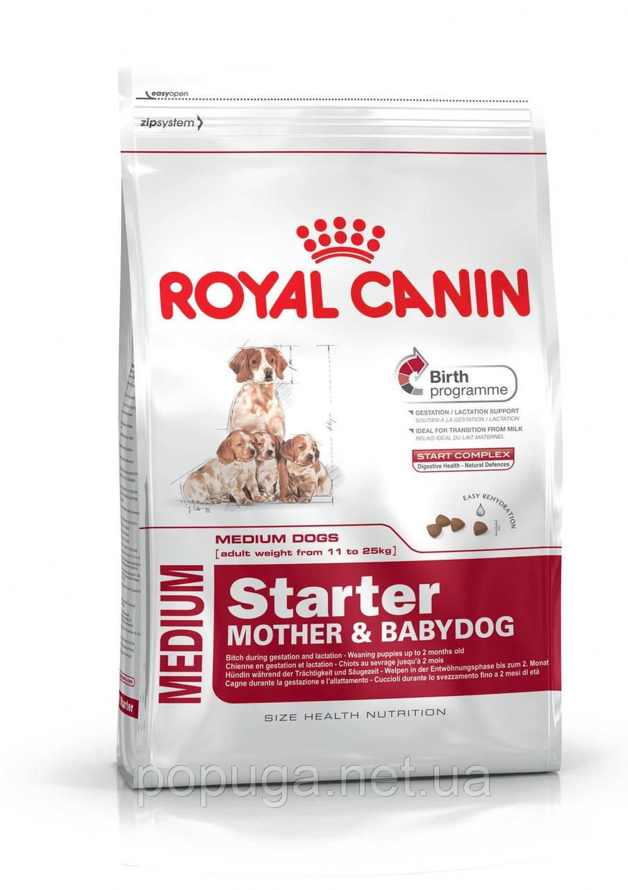 Royal Canin Medium Starter корм для щенков и кормящих собак, 12 кг