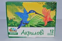 Акрил 12 цветов 240 мл 322072
