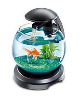 Tetra Cascade Globe - круглый аквариум для рыб