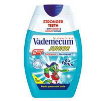 Vademecum Детская зубная паста мятная 2-в-1 (от 6 лет), 75 мл
