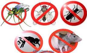 Защита от грызунов и насекомых
